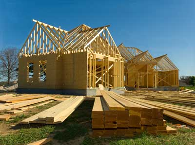 дом-экономия-строительство-каркасный