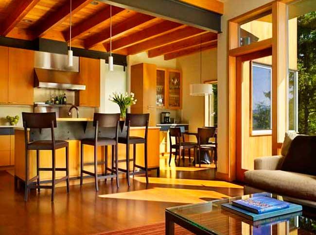 Совмещенная кухня с гостинной в доме