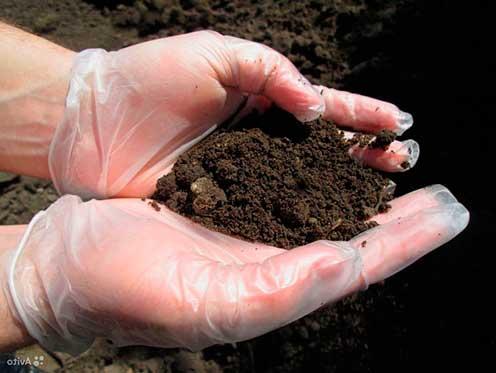 какой фундамент на торфяном грунте можно строить