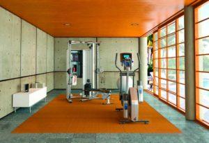 Стены и потолок спортзала в доме