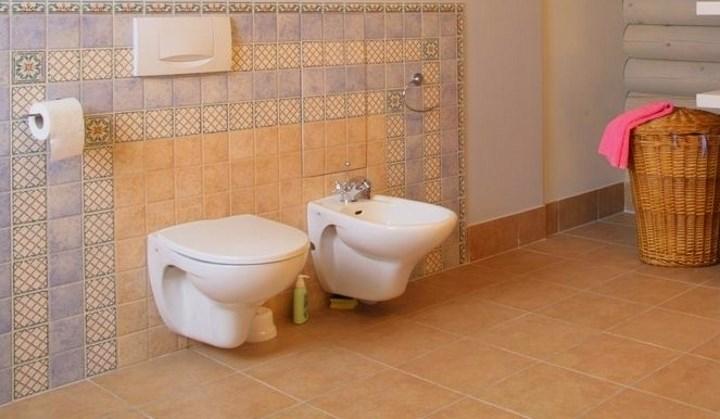 Обустройство туалета в частном доме