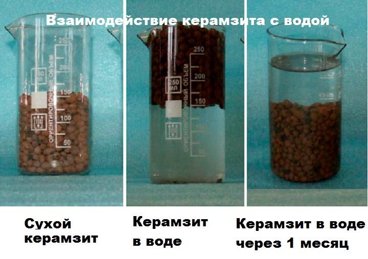 Эксперимент с керамзитом и водой