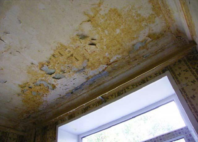 Протечка крыши внутри дома