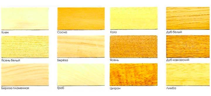 Виды древесины и их использование в строительстве дома