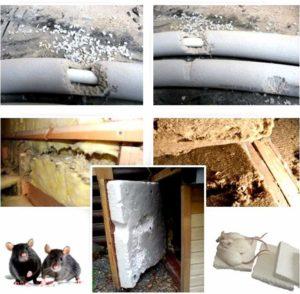 Что наделали мыши в каркасном доме