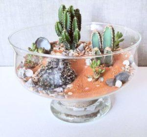 Из вазы для конфет флорариум