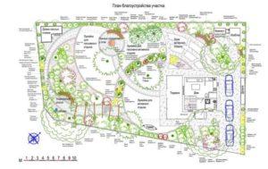 Как озеленить площадку на даче