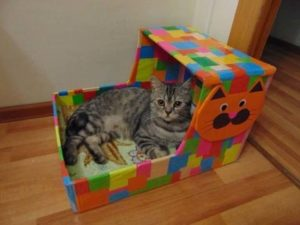 Дом коту