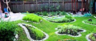Зеленая площадка на даче