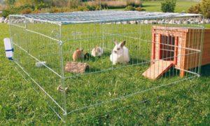Вольер на улице для кроликов