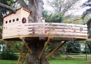 Как создать дом на дереве