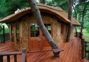 Фото дома на дереве
