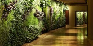 Вертикальное озеленение холла
