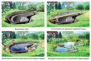 устройство водоема конфигурация водоема должна быть выполнена по примерам