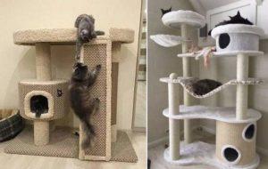 2 домика для кота
