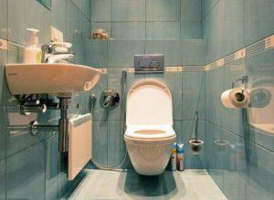 Уникальный туалет