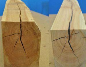 Трещины внутри древесины могут возникнуть по разным причинам