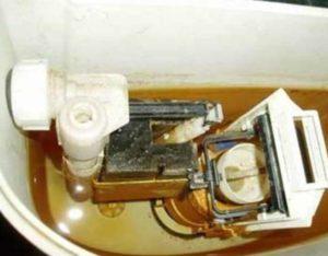загрязнилось седло и лепестковый клапан от ржавчины