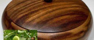 На Кавказе этот орех считается священным деревом