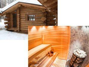 Из какой древесины лучше строить баню: кедр, лиственница или липа