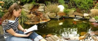 Декоративный пруд – водоем с большой глубиной