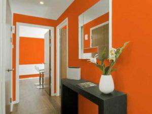 Оранжевый интерьер прихожей + фото