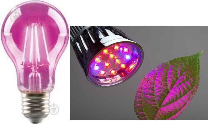 для функционирования таких световых источников важно подключение специализированного пускорегулирующего механизма